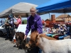 2012 Oracle Oaks Festival_238