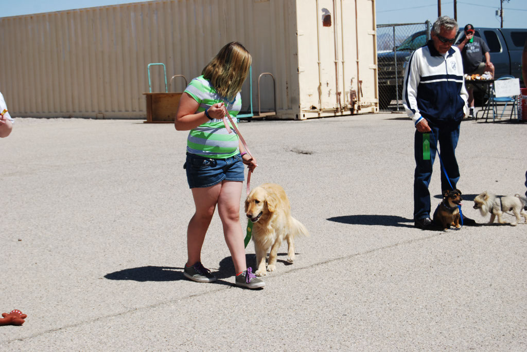 2013 Elks Dog Show_062