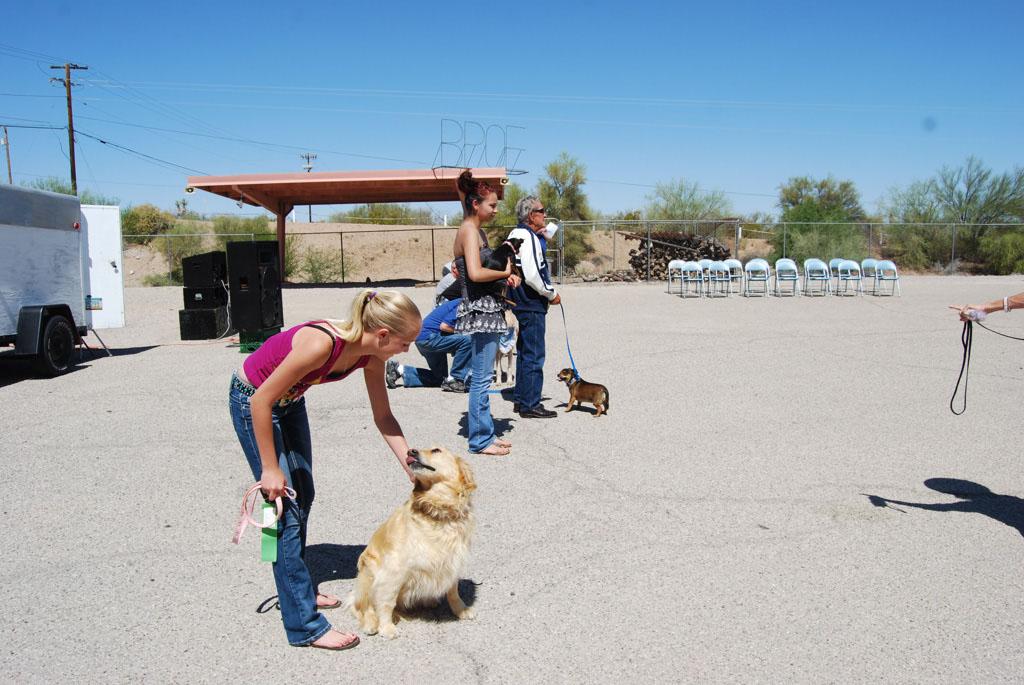 2013 Elks Dog Show_065