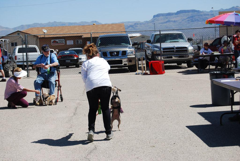 2013 Elks Dog Show_070