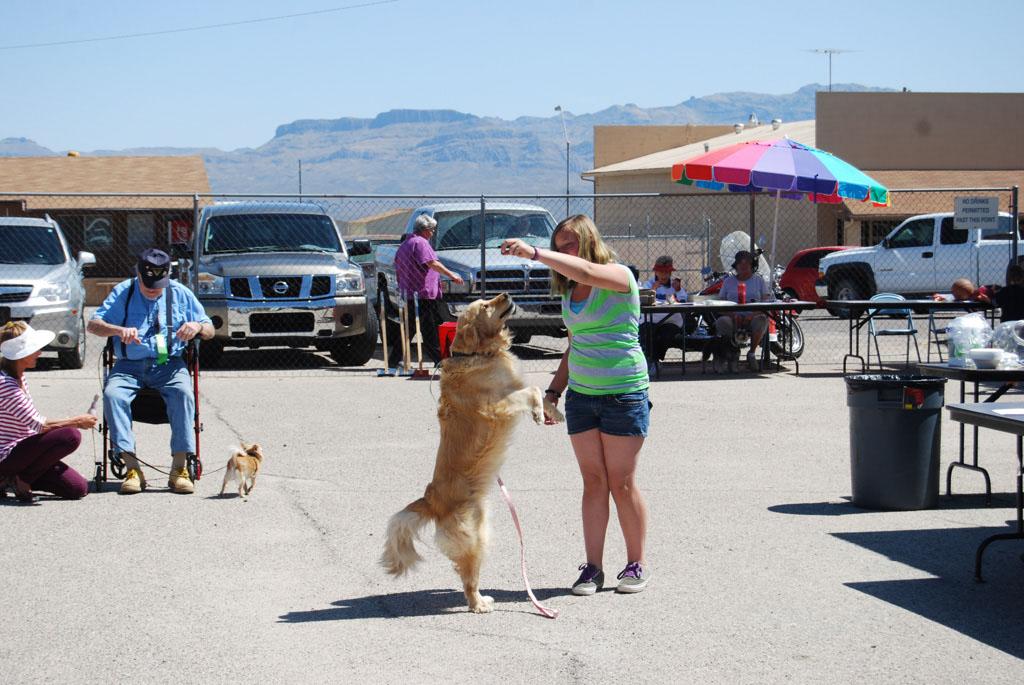 2013 Elks Dog Show_072