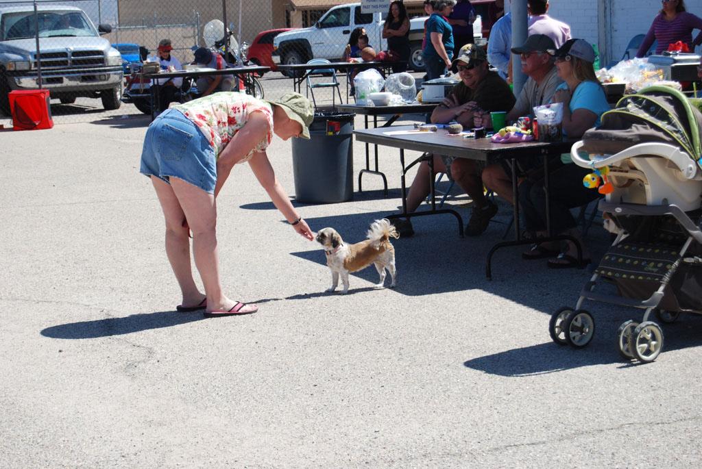 2013 Elks Dog Show_073