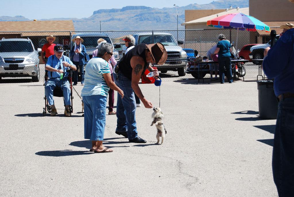 2013 Elks Dog Show_075