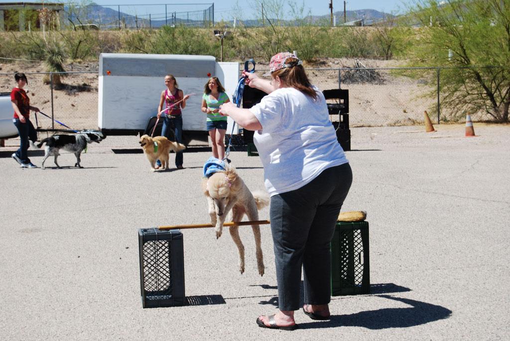 2013 Elks Dog Show_086