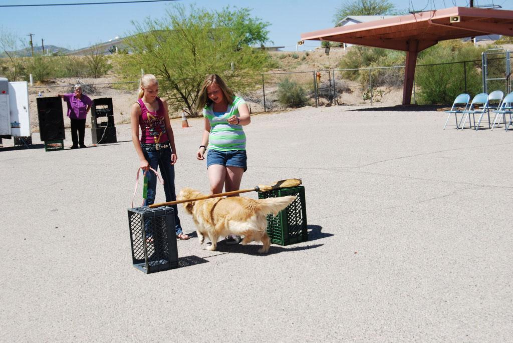 2013 Elks Dog Show_087