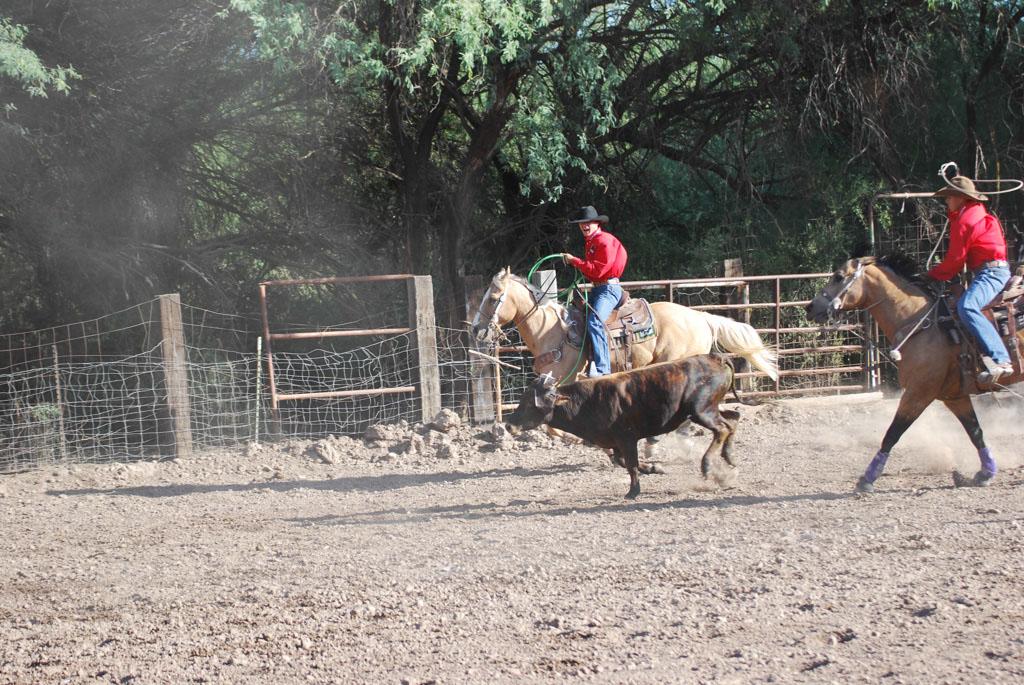 Aravaipa Cowboy_007