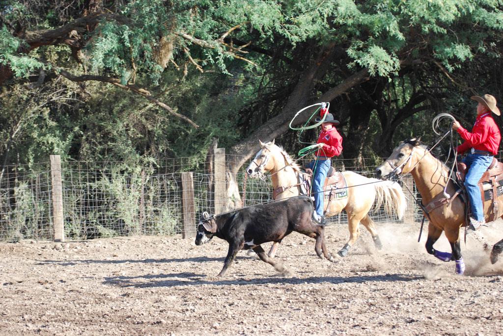 Aravaipa Cowboy_008