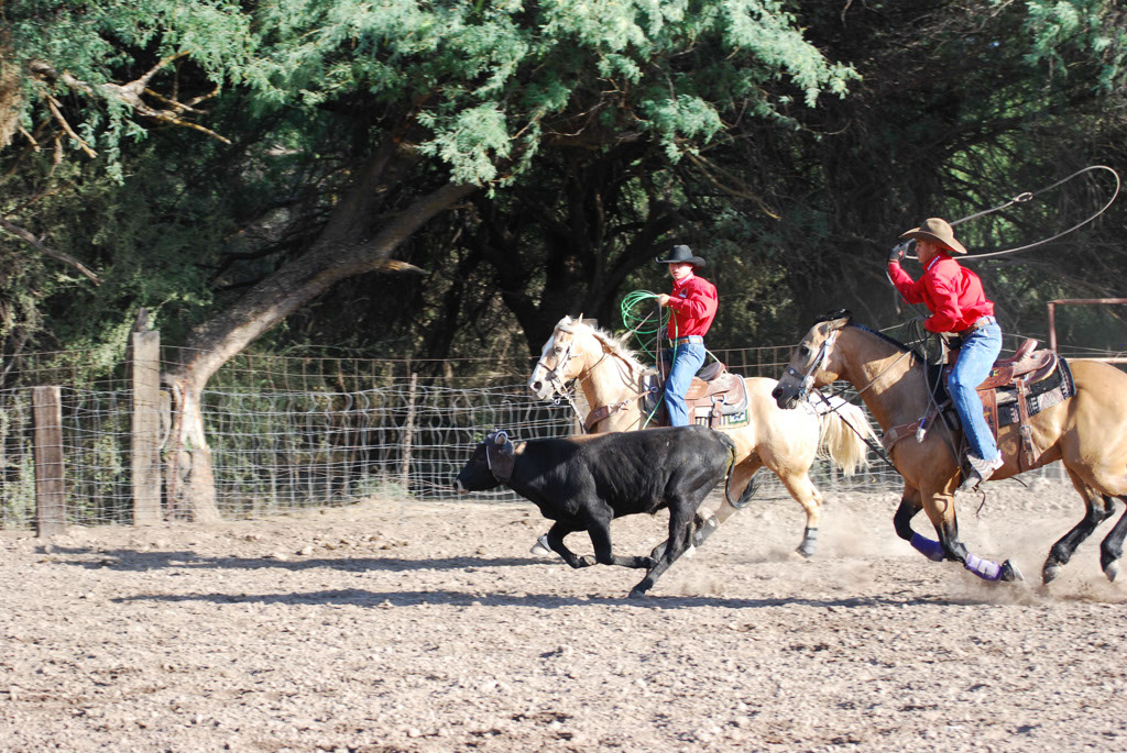 Aravaipa Cowboy_014