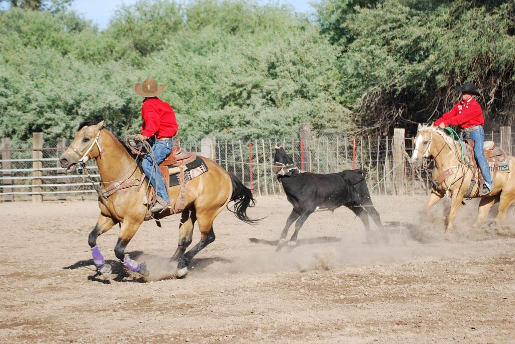 Aravaipa Cowboy_015