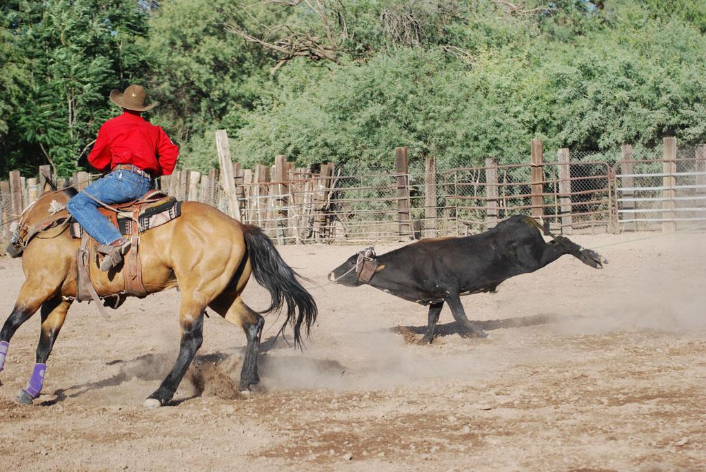 Aravaipa Cowboy_016