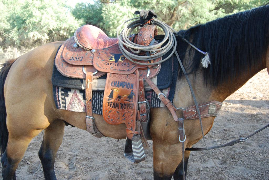Aravaipa Cowboy_021