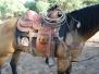 Aravaipa Cowboy
