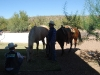 CAC Rodeo Team_036