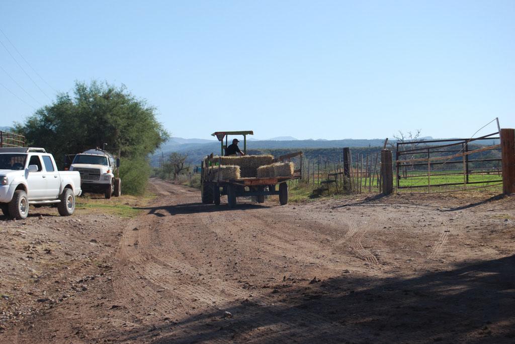 Carlink Ranch_004
