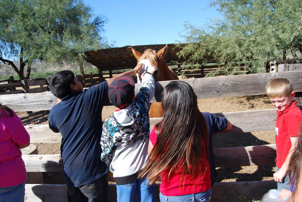 Carlink Ranch_022