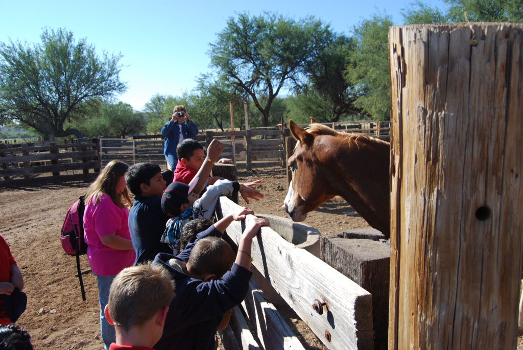 Carlink Ranch_023