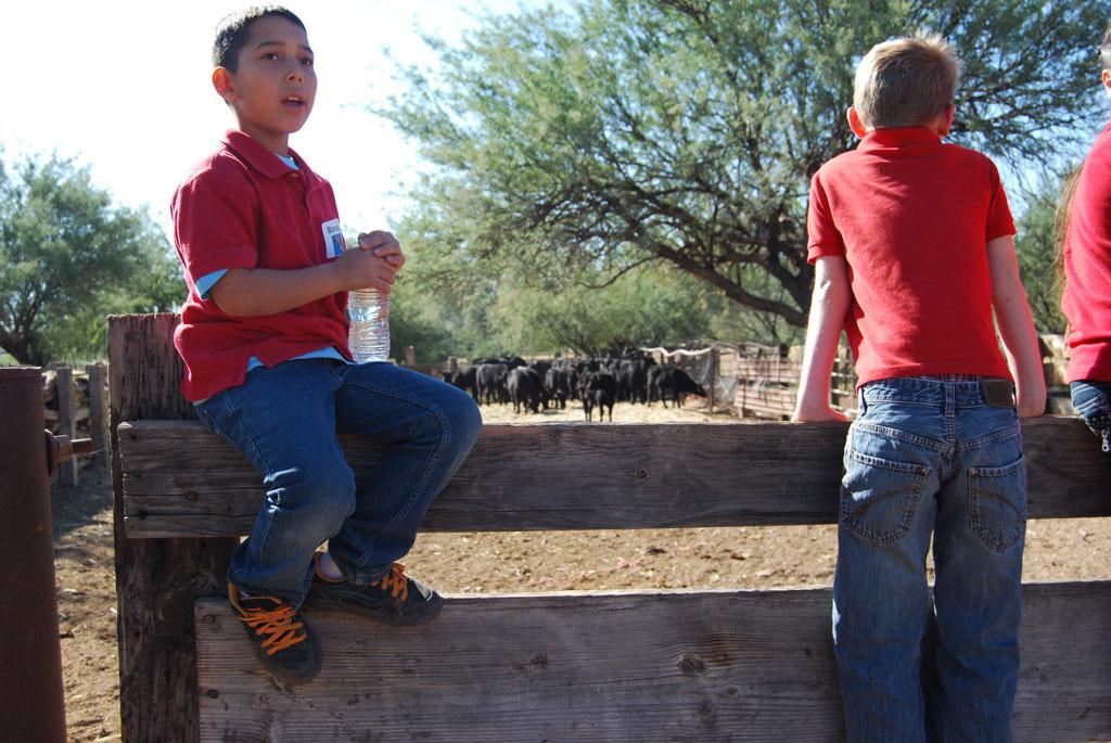 Carlink Ranch_031