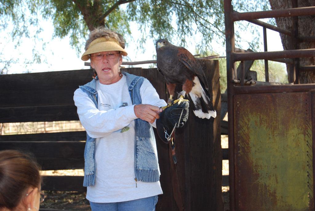 Carlink Ranch_041