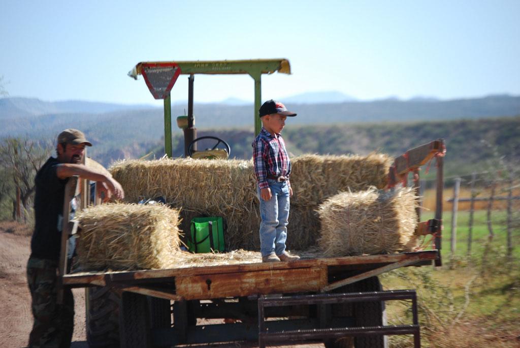 Carlink Ranch_053