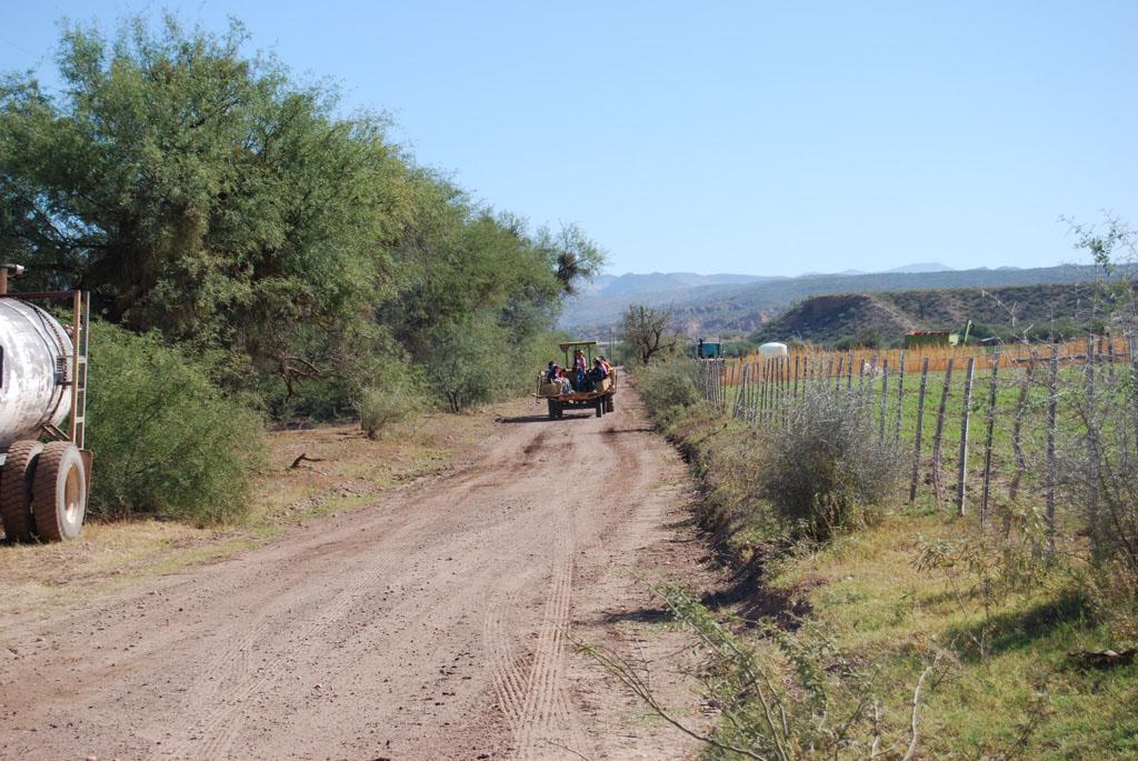 Carlink Ranch_062