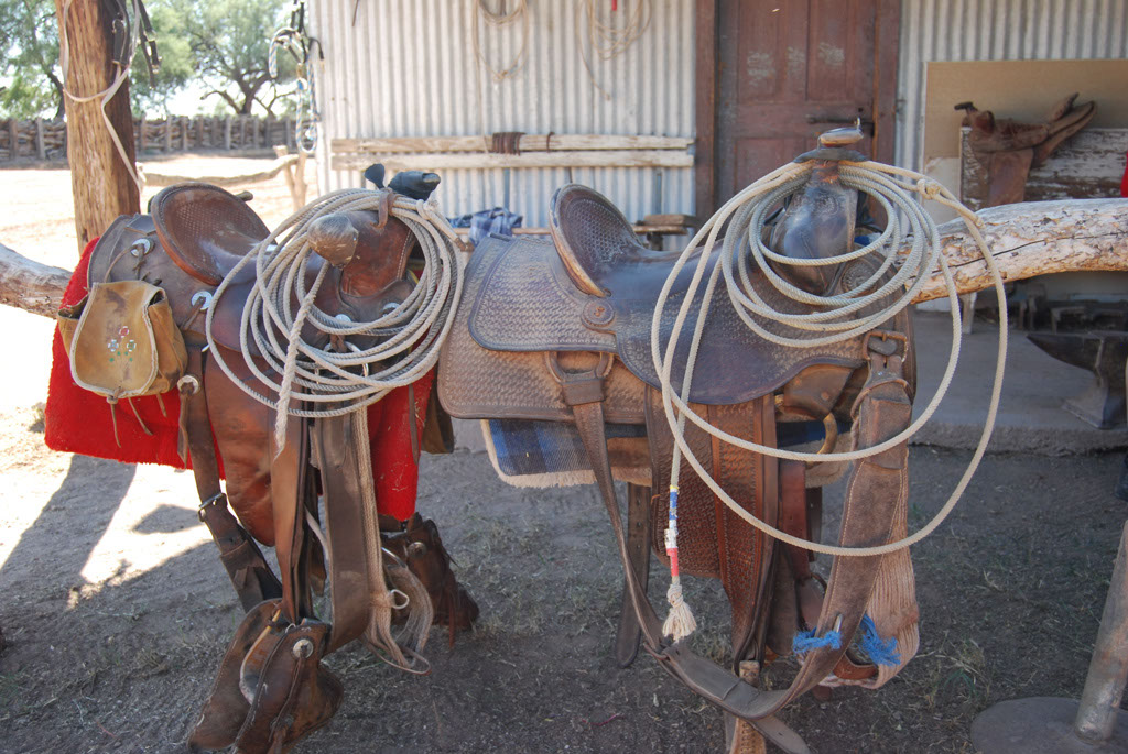 Carlink Ranch_066