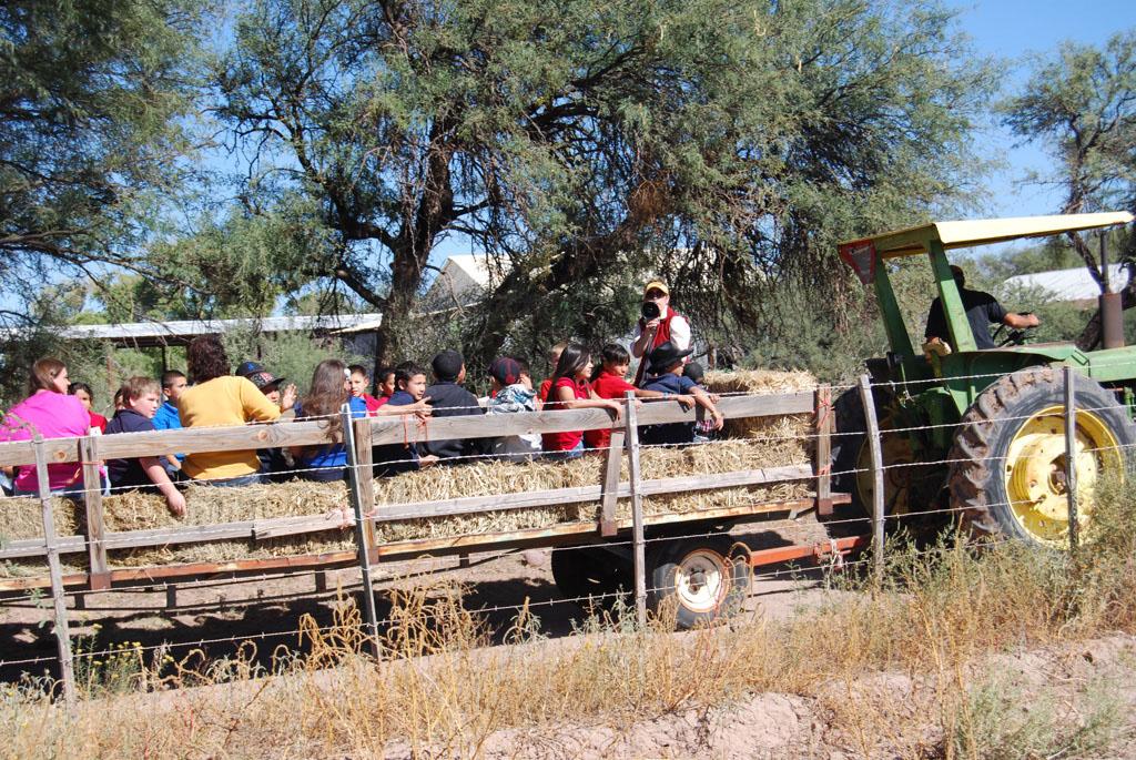 Carlink Ranch_079