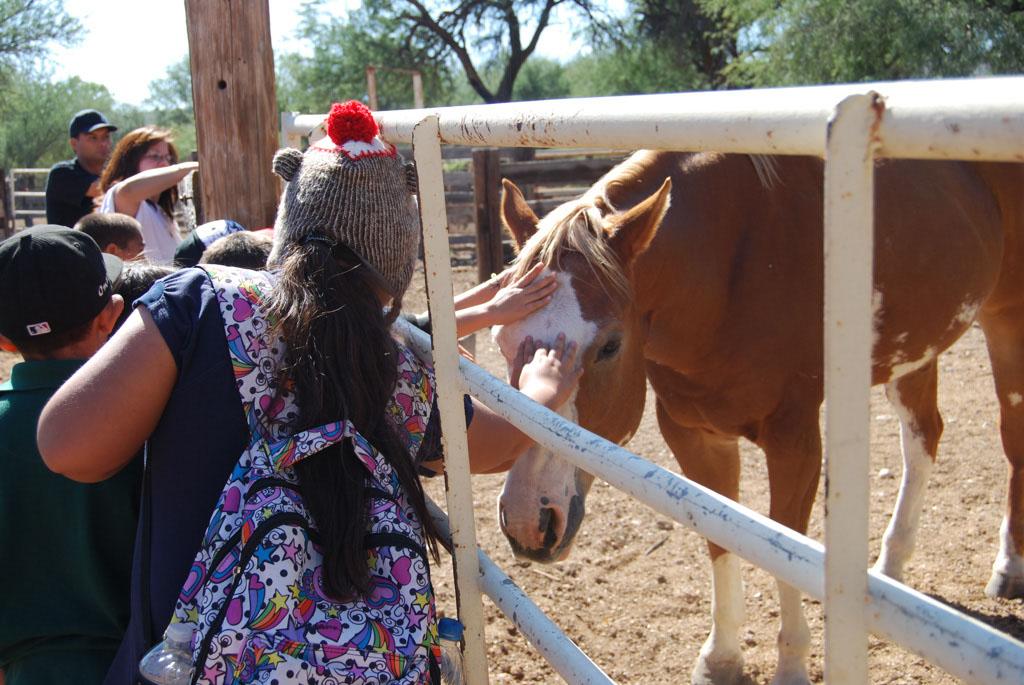 Carlink Ranch_131