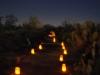 Glow 2012_066