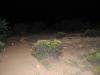Glow 2012_068