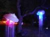 Glow 2012_075