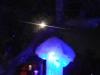 Glow 2012_077