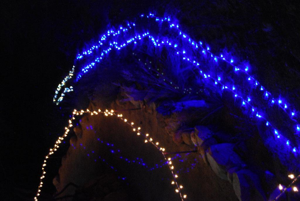 Glow-2013_082