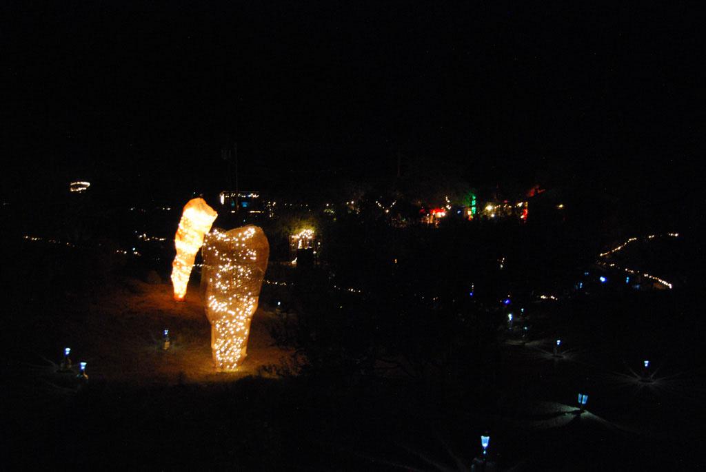 Glow-2013_087