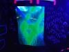 Glow-2013_019