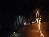 Glow-2013_079