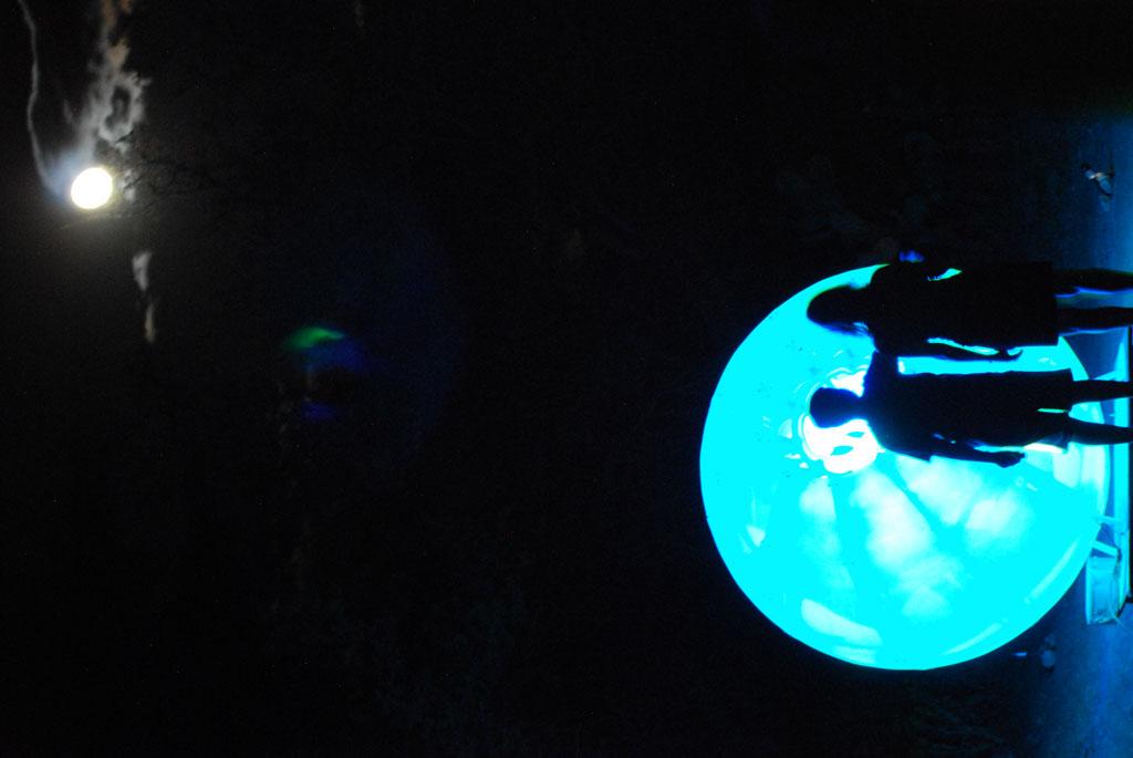 Glow-2013_264