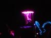 Glow-2013_274