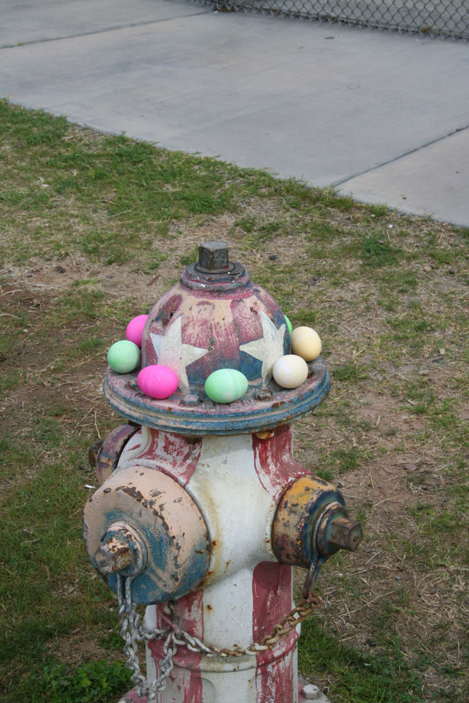 Hayden Easter_018