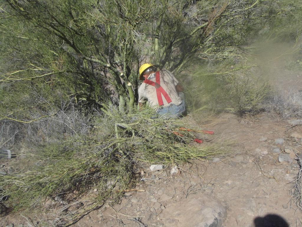 LOST Trail_011