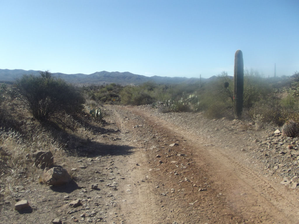 LOST Trail_013