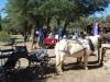 Rancho-Robles-Concert_007