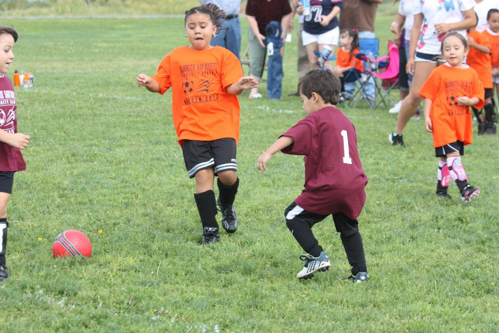 Soccer_181