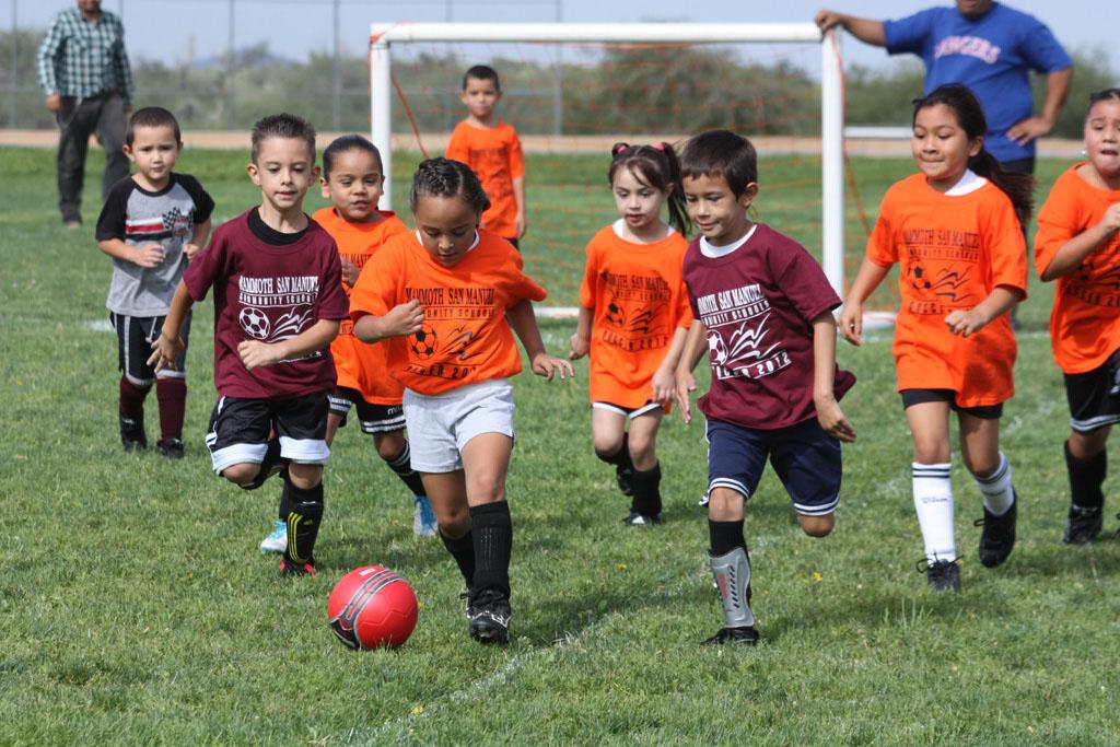 Soccer_210
