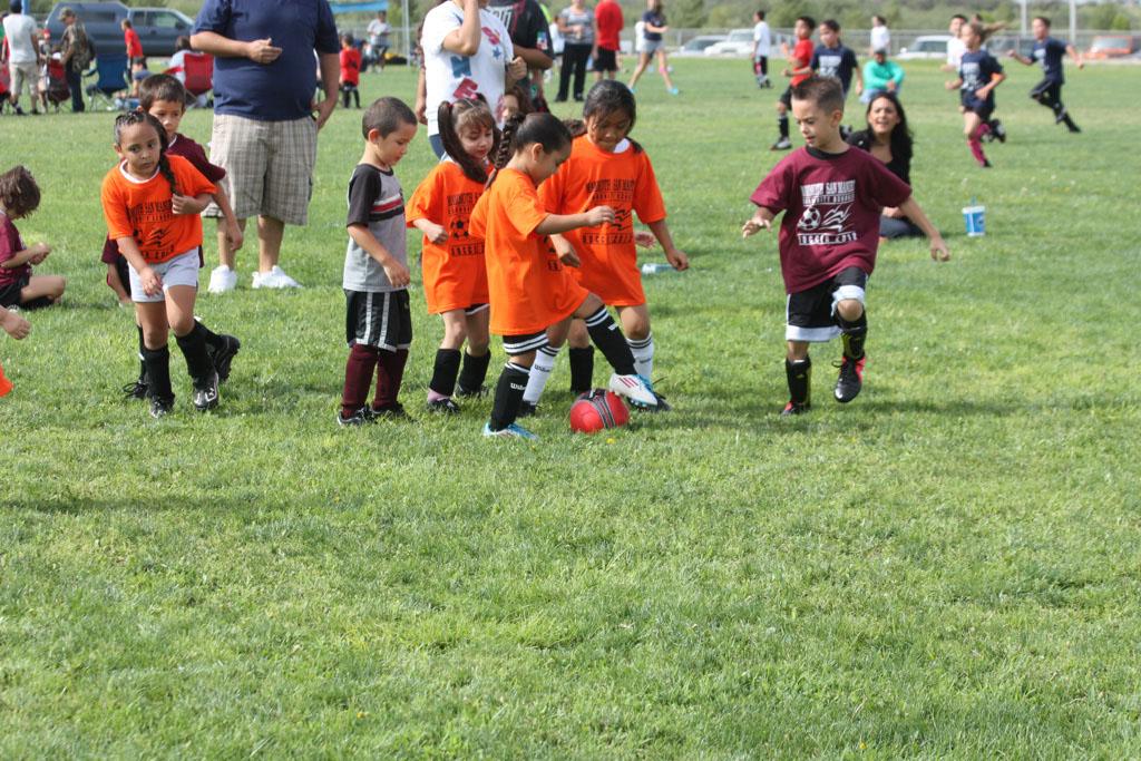 Soccer_227