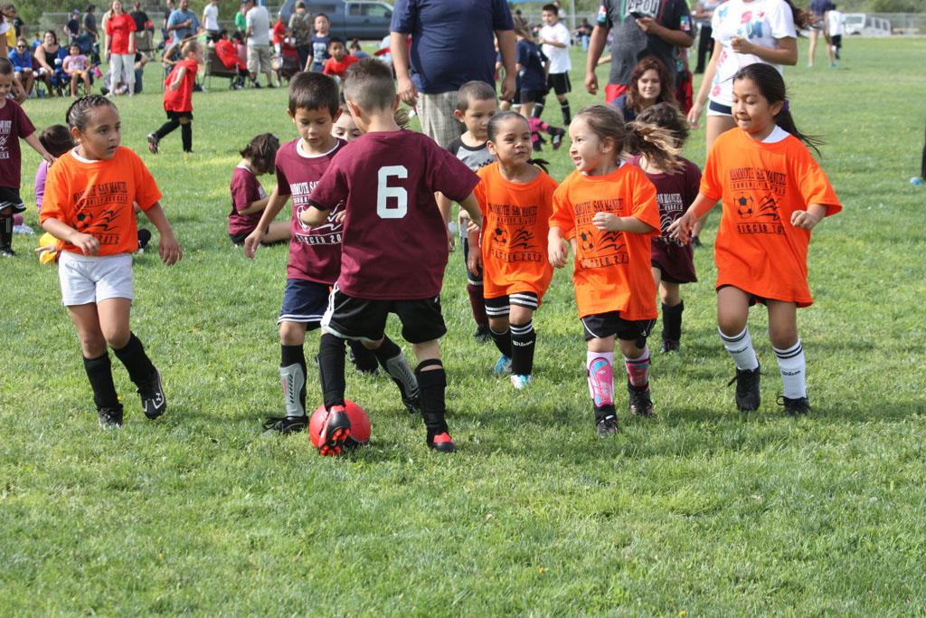 Soccer_229
