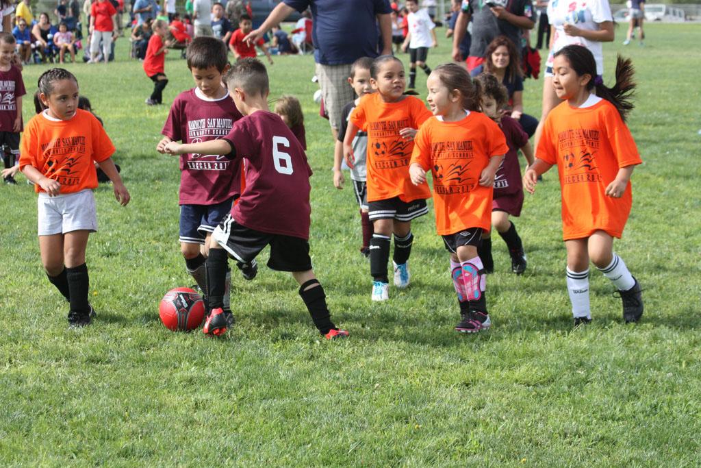 Soccer_230