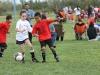 Soccer_142