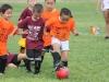 Soccer_176
