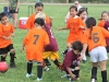 Soccer_194