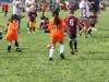 Soccer_222